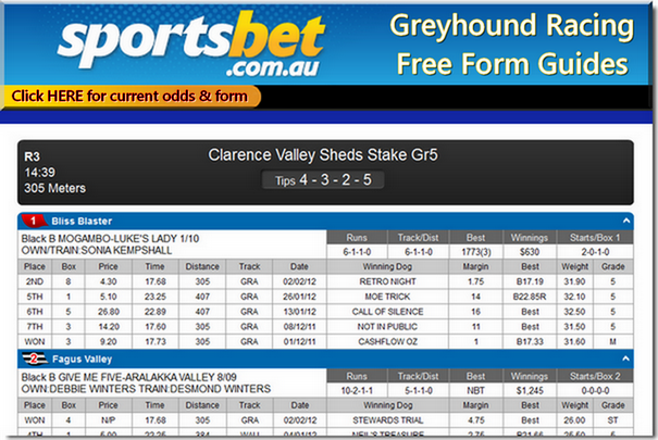 Free online form for Greyhound Racing every day